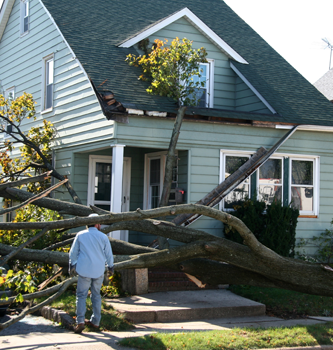 A man standing outside his house looking at damage caused by a fallen tree.